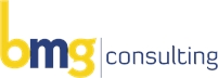 BMG Consulting Alex Bayat